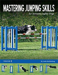 Mastering Jumping Skills Cover