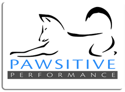 pawsitiveperformancelogo-solidbg